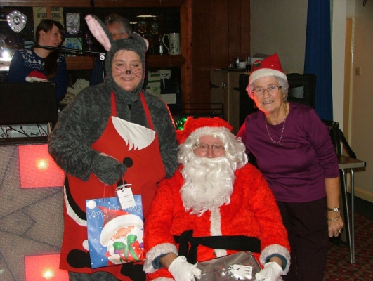Santa and Friends 7 (2014)